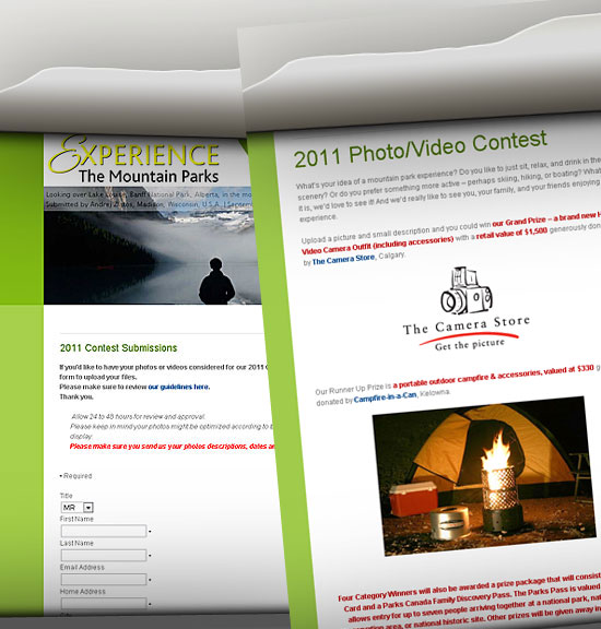 2011_Contest_Submissions_Page_Screenshot