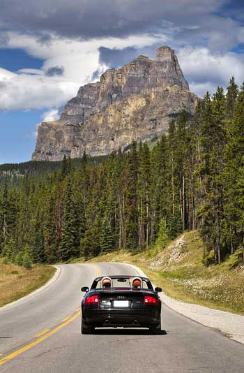 Bow_Valley_Parkway