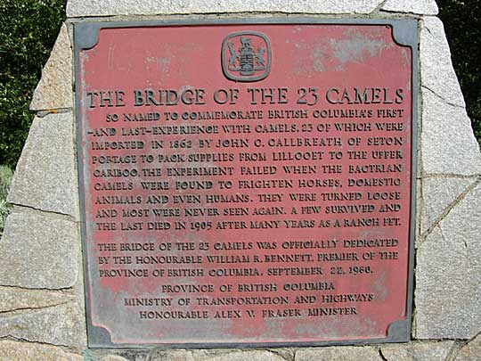 Bridge_23_Camels_Cholcotin_Section