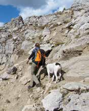 Keeping Your Dog Safe in the Mountain Parks3