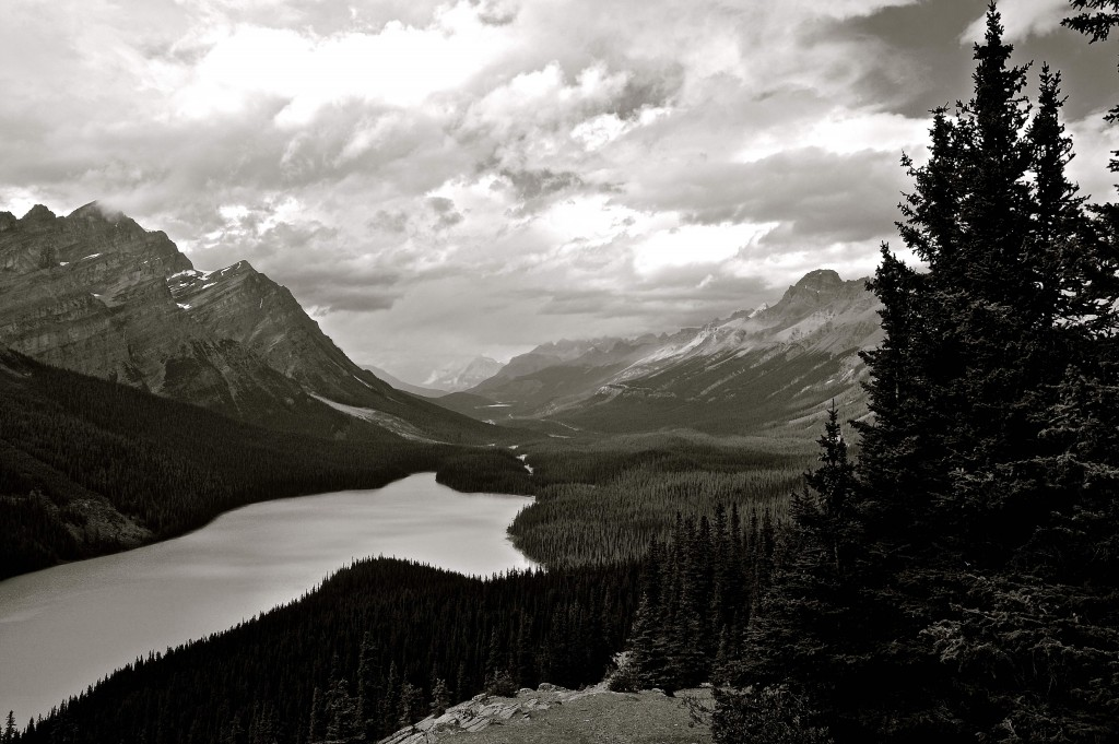 rsz_peyto_lake_black_and_white_copy