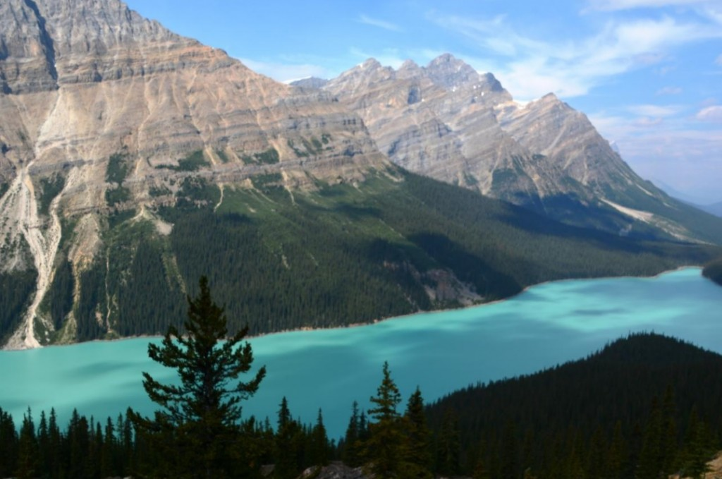 "View of Peyto Lake from atop the ""Bonus Round"". Mt Breaker in the background."
