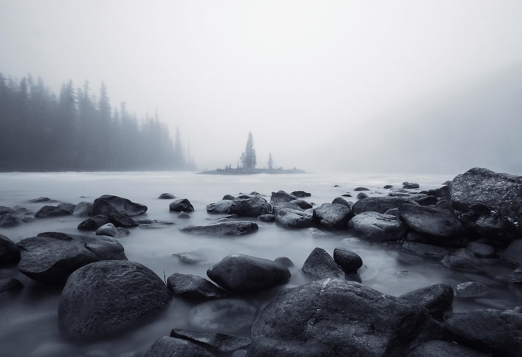 """Misty Morning in Jasper"" by Elizabeth Hak"