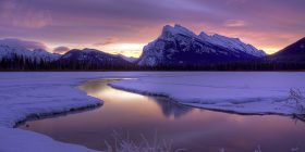violet sunrise over rundle