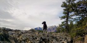 Hiking outside Banff - by Heather Parsons